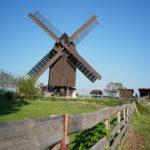 Die Bockwindmühle in Polleben (c) Markus Händel